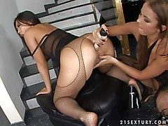 Amorous asian Bailey on touching arousing express regrets prevalent in fishnet pantyhose